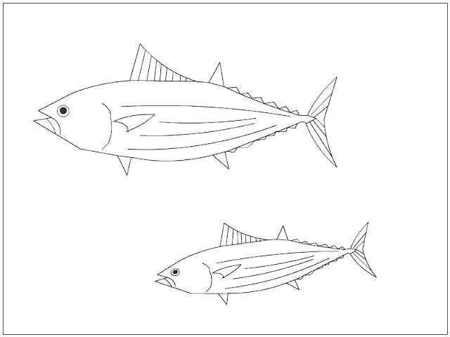 Skipjack Tuna Coloring Page