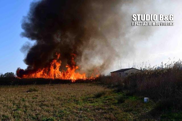 43 πυρκαγιές παρά τις βροχές