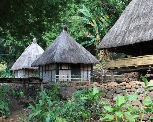 Tinuku.com Travel Takpala Village watch exotic Abui tribe in Alor Island, Lapo and Fala Foka houses accompanied Lego-Lego dance