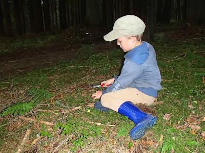 grzyby w sierpniu, grzyby 2016, grzyby na Orawie, nowy nóż do grzybów, dziecko uczy się używać noża