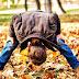 5 must have abbigliamento bambino e bambina autunno 2016
