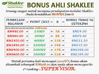 facial, servis, kuantan, pahang, pantai timur, youth, shaklee, spa shaklee, twb, the walking beauty