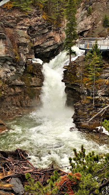 blakiston falls waterton