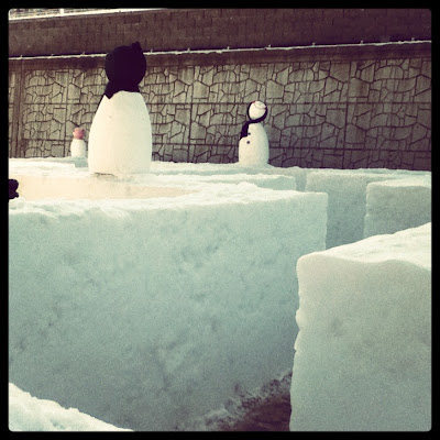 An ice maze at The Hwacheon Ice Festival in Korea | Lindsay Eryn