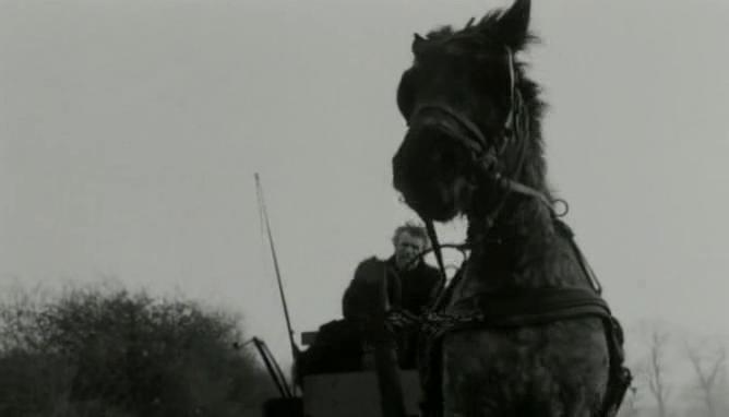 シネマ走り書き: トリノの馬 「ニーチェの馬」