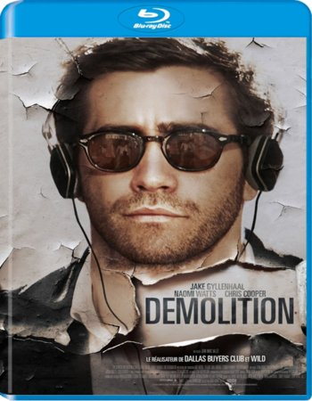 Demolition (2015) dual audio 480p