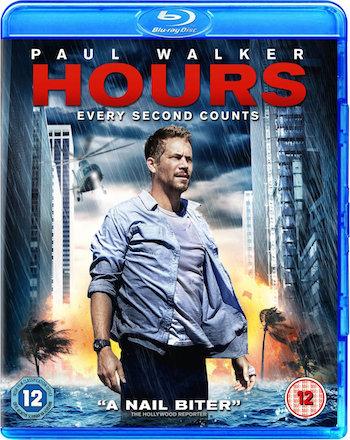 Hours 2013 Dual Audio Hindi BRRip 480p 300mb