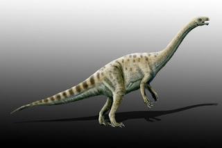 Adeopapposaurus Kısa Bilgi