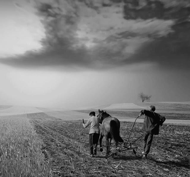 "Romanian Professional Photographer- ""Ionut Caras"" 1978"