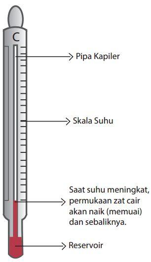 Bagaimana Prinsip Kerja Termometer Zat Cair : bagaimana, prinsip, kerja, termometer, Jenis-Jenis, Termometer, Prinsip, Kerjanya, Guru-Terselubung