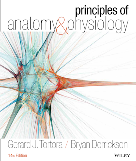 Principles Of Anatomy And Physiology 14th ebook-PDF immediate shipment