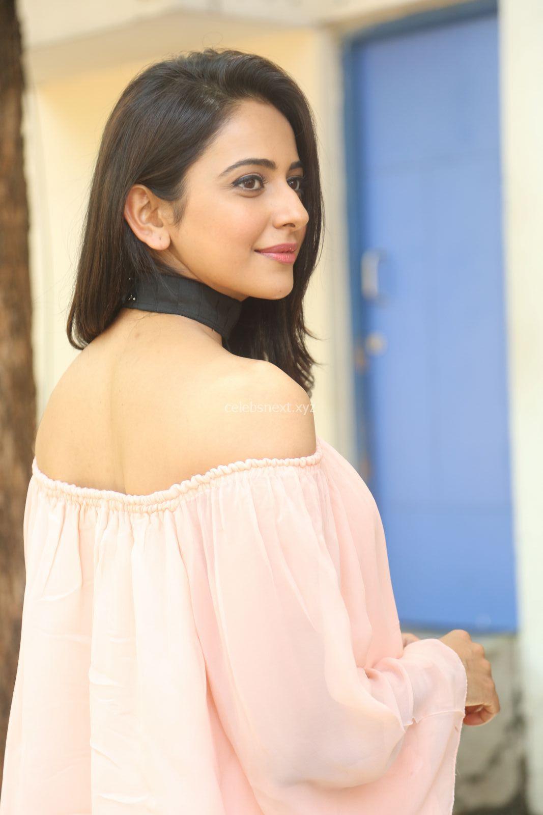 Rakul Preet Singh in lovely Pink Crop Top and Black Trousers at Jaya Janaki Nayaka success meet ~ CelebsNext Exclusive Celebrities Galleries