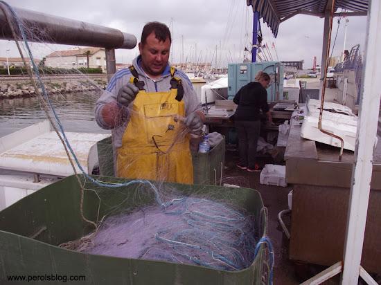 Marché aux poissons de Carnon