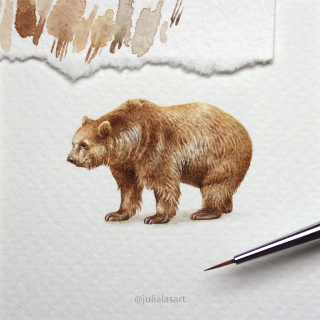 12-Bear-Julia-Las-Tiny-Animal-Watercolor-Paintings-and-Other-Miniatures-www-designstack-co