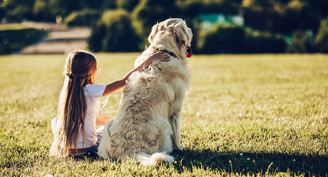 Just Ask Joyce: My Ex is Demanding to Keep the Dog, and Our Kids are Broken Hearted