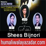 http://www.humaliwalayazadar.com/2016/10/shees-bijnori-nohay-2017.html