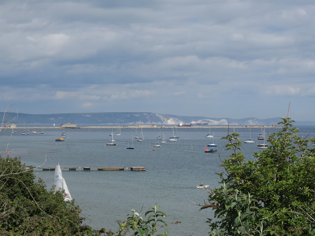 Looking across Portland Harbour towards the White Cliffs of Purbeck with sailing boats