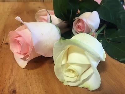significado-color-rosas