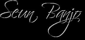 Seun Banjo
