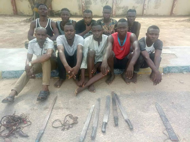 ARREST OF SARA-SUKA/POLITICAL THUGS SUSPECTS TERRORIZING BAUCHI METROPOLIS