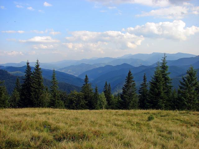 Вид с вершины горы Рипна