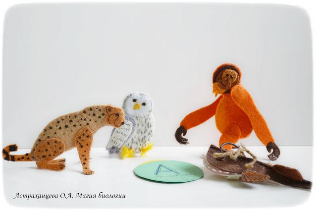 palchikovyj-teatr-orangutan-udilshhik-biomodelirovanie-sova-gepard