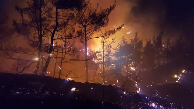 Κάηκε το καμάρι της Κρήτης: Σελάκανο πριν και μετά την φωτιά... Φωτογραφίες και βίντεο!!!