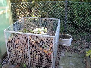 Kompostbeschleuniger Beinwell