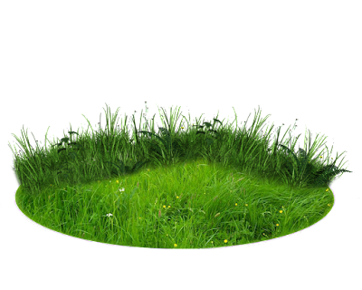 Png Grass Images For Photoshop