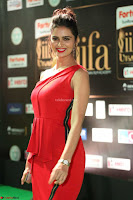 Meenakshi Dixit in Red One Shoulder Red Zipped up gown at IIFA Utsavam Award 64.JPG
