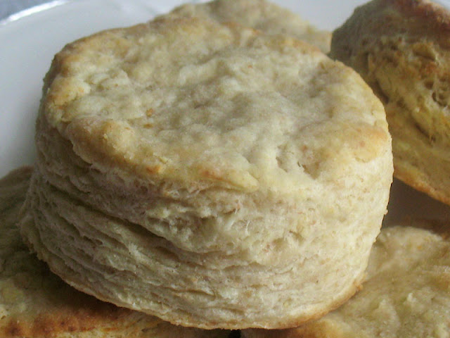 goat cheese biscuit