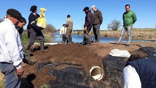 Es por colocar un tapón que derivó en una inédita inundación de campos en Daireaux, en el oeste de la provincia.