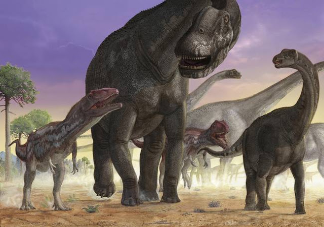 Dinosaur evolution: Lumbering giants had agile ancestors