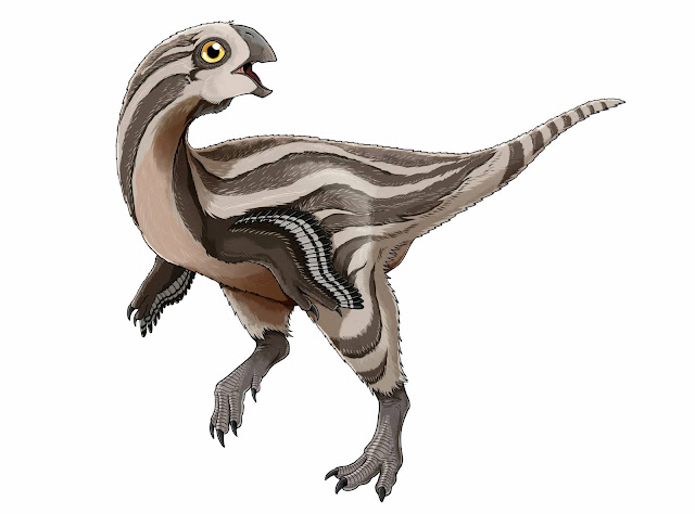 New oviraptorosaur species discovered in Mongolia