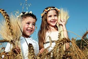 Elérkezett Sávuot ünnepe ✲ Chág Sávuot, chág hábikurim, chág háászif… ✲ Mi az értelme?
