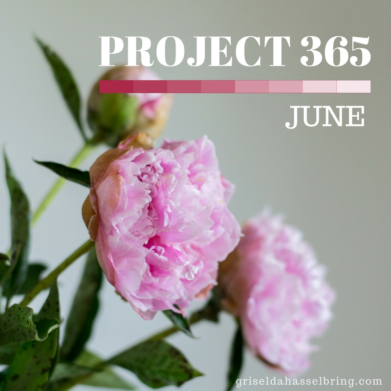 project 365 - june