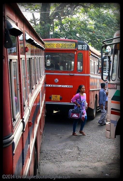 Autobus - Sri Lanka