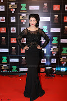 Bollywood Celebrities on the Red Carpet Of Zee Cine Awards 2017 Exclusive 095.JPG