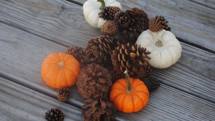 Wallpaper 2: Pumpkins Fall Holiday Decoration 2