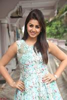 Nikki Galrani at Prema leela pelli gola trailer Launch ~  Exclusive 115.JPG