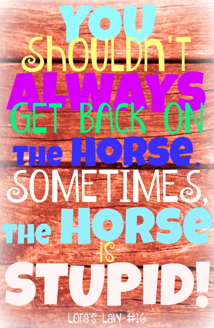 Get Back on the Horse Quote to Share: Lora's Law #16 Pinterest