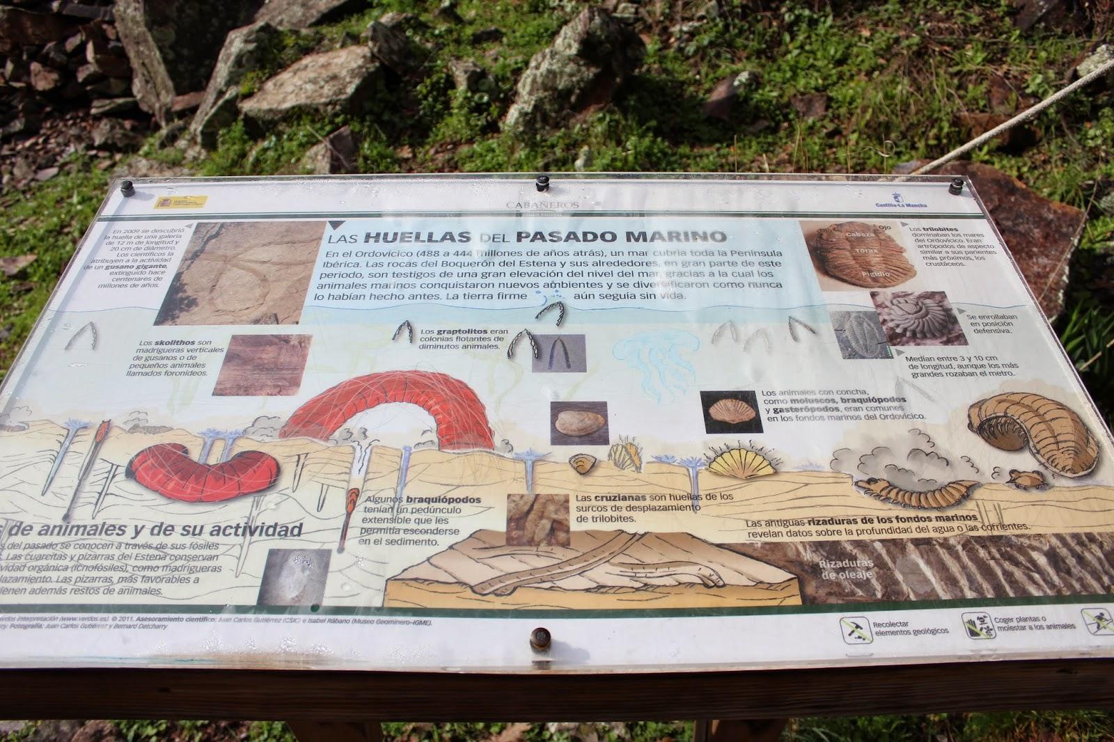 Cartel interpretativo de las huellas del gusano del Boquerón de estena