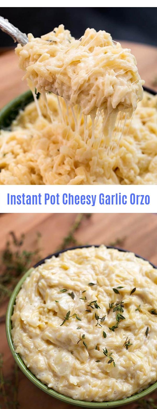 Instant Pot Cheesy Garlic Orzo