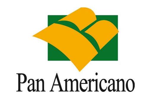 CVM rejeita acordo com Panamericano em processo sobre irregularidades