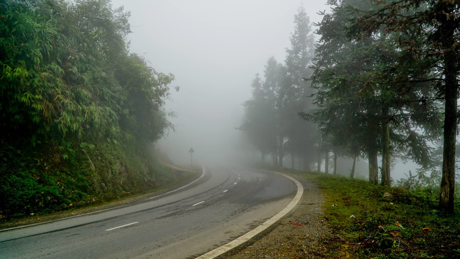 Road into the foggy unknown