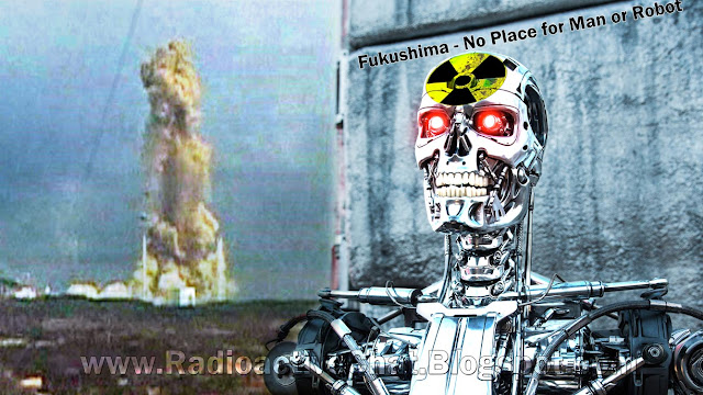 Fukushima No Place for Man or Robot
