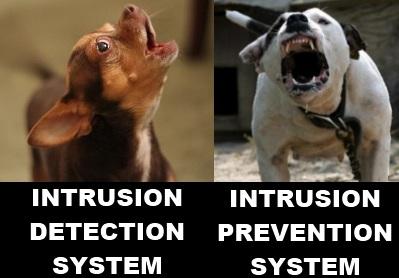 Security Memetics: IDS vs IPS