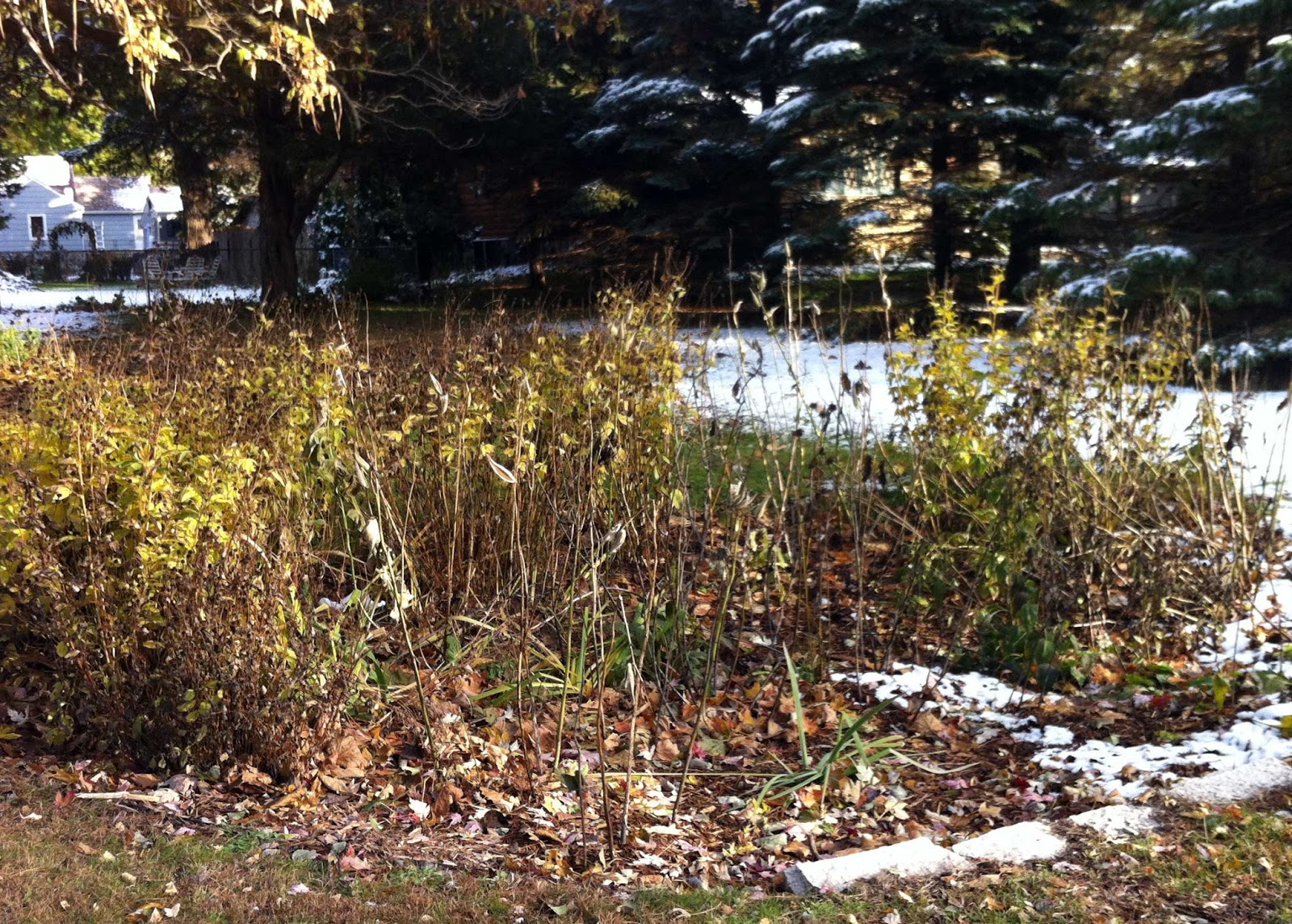 Coming Events this Spring around the Watershed - Ramsey-Washington ...