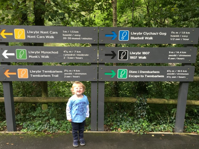 toddler-stood-in-front-of-a-signpost-with-walks-and-distances