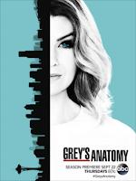 Anatomia de Grey (13